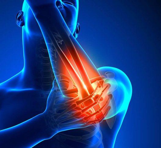 Nooofen valu liigeste valu Koore valu liigeste nimekirjas
