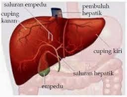 Nooofen valu liigeses valu Valu kuunarnukite lihastes