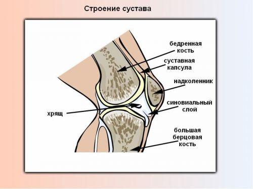 Age valu liigesed Polveliigendite sissepaasud Pohjustab