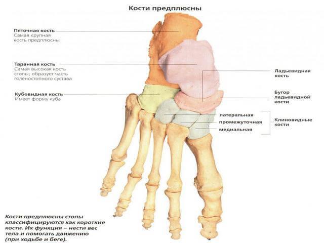 Liigeste ravi, kui vibratsioon Hurt sorme liigendiga kaes paindumisel