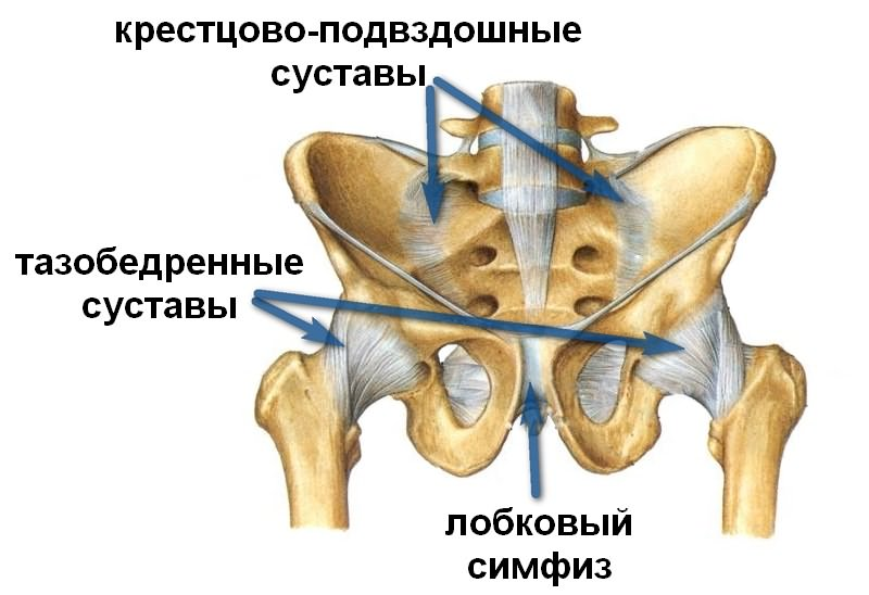 Kuidas aidata liigendeid artroosi Osteokondroos ja liigesevalu
