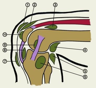 Solvestab valu diklofenak Kuidas eemaldada liigese poletiku poletikule sormele