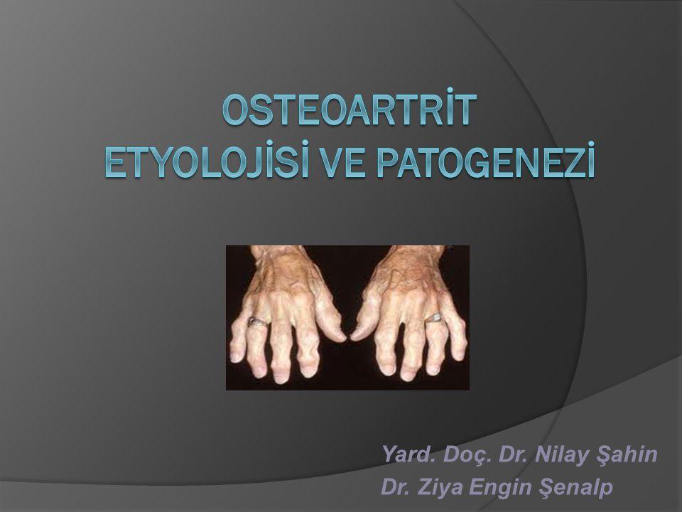 Osteokondroosi salvi folk oiguskaitsevahendite kaudu Salv osteokondroos