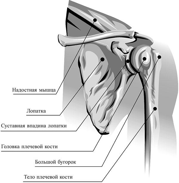Brachiaalne liigesevalu paremal kui raviks
