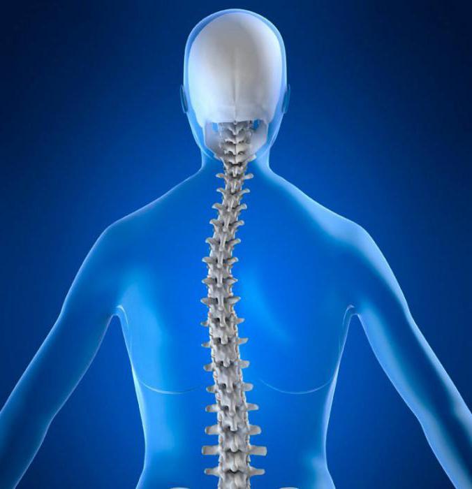 Artroosi peatusliidetes millest STI-d oli liigestele haiget teinud
