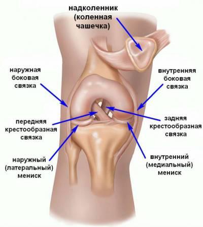 Suurete liigeste ja lihaste valu pohjused Arthites liigestes koguneb