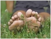 jalgade liigeste poletik, kuidas eemaldada Ravi liigese havitamisel
