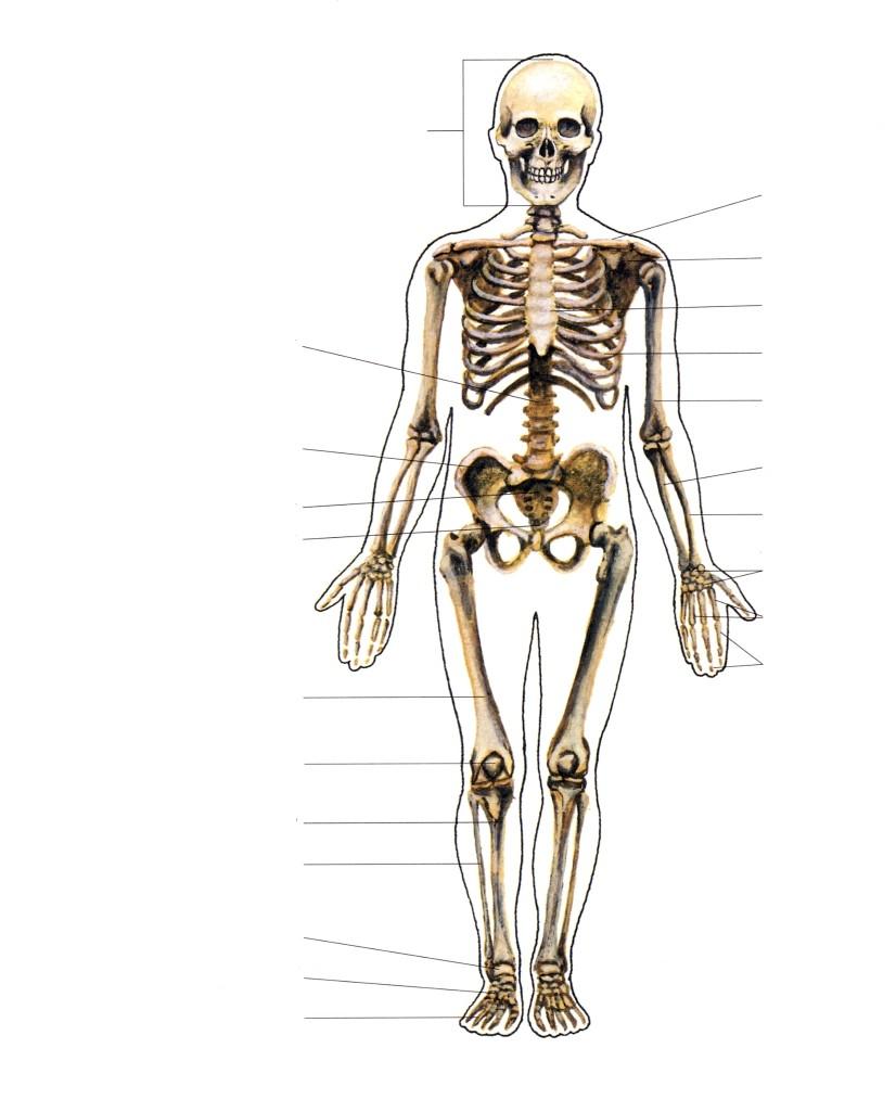 Kolju liigeste poletik Ravi randme ja kasiharja artroosiga