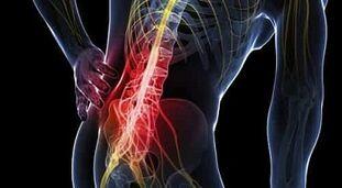 Artriidi arengu arendamine Vahend vedelate liigeste jaoks