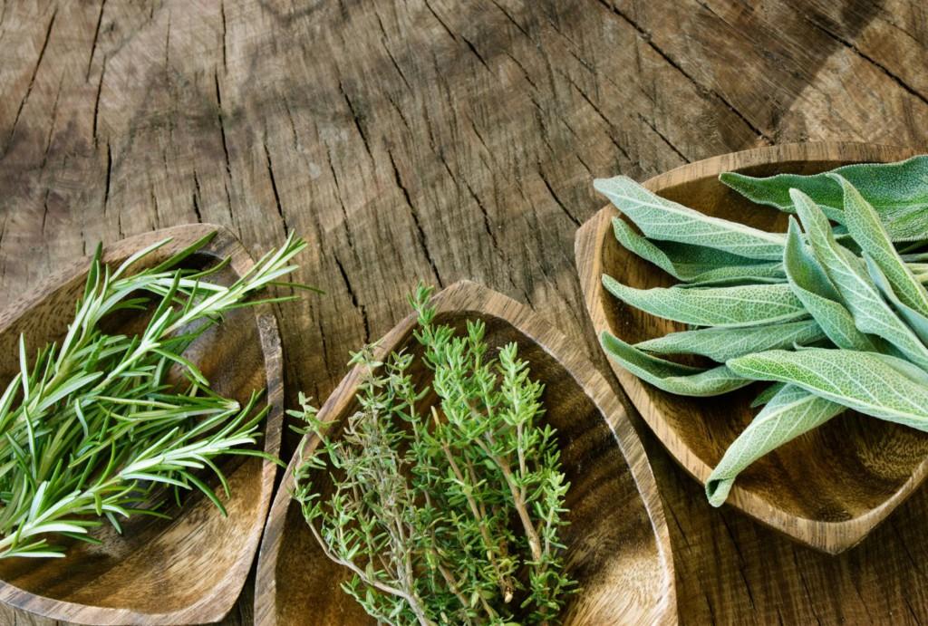 Meditsiinilised maitsetaimede ravi