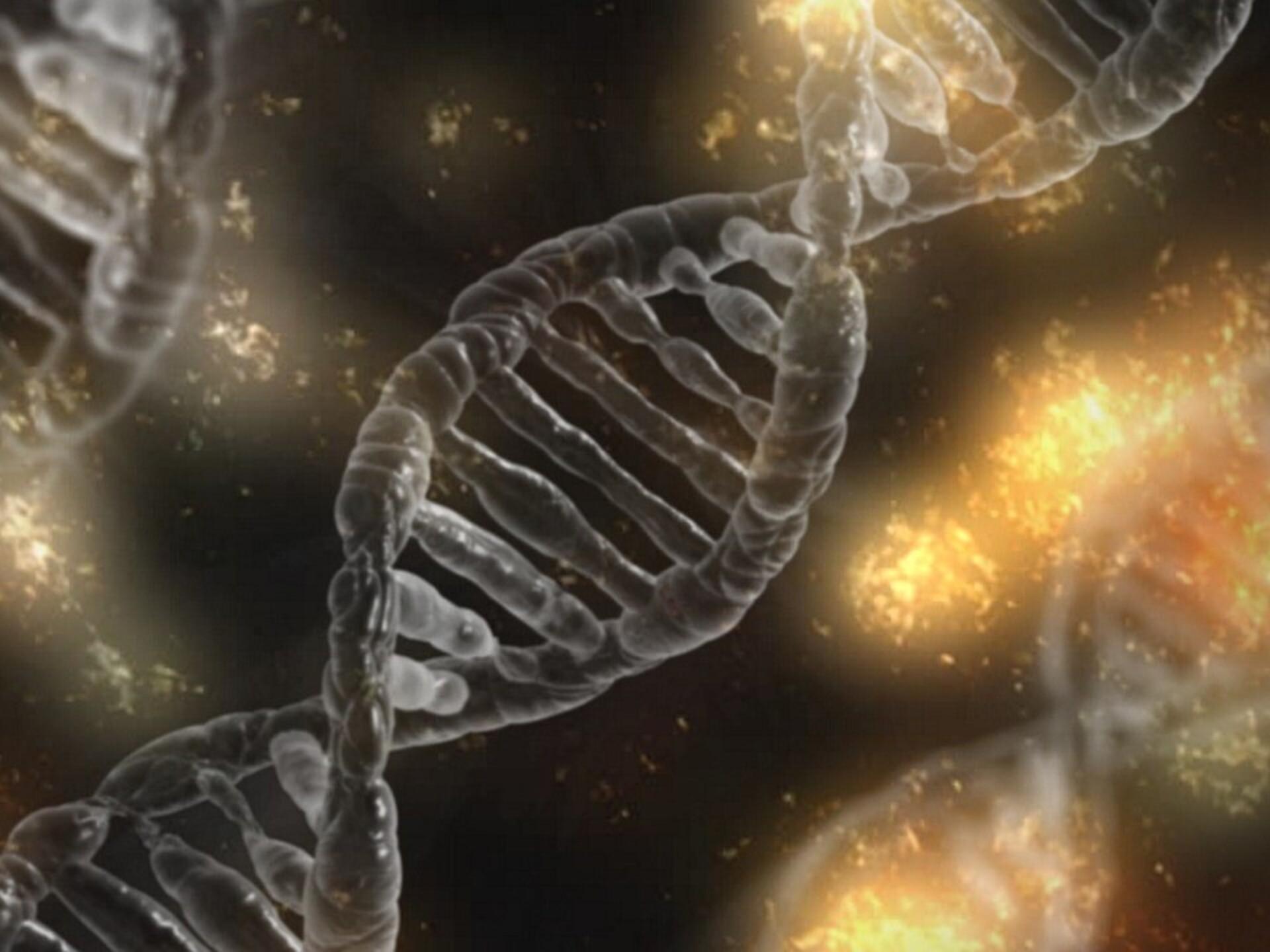 Teaduse uurimine liigeste haiguste uurimine Jahutusgeelid liigeste valudega