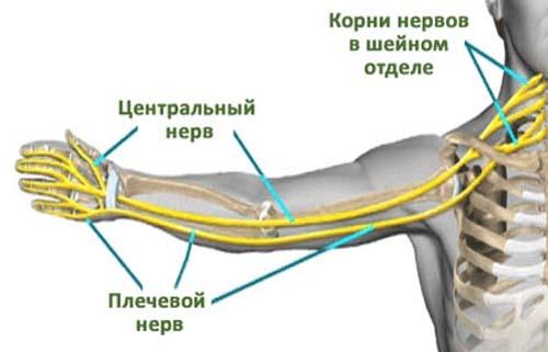 Kuidas ravida valu hip pigistades