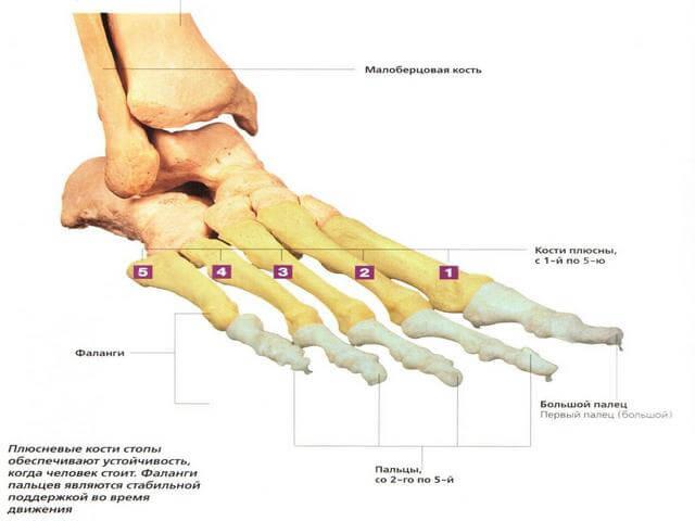Valu jalgade alumise selja ja liigeste valu kui ravida