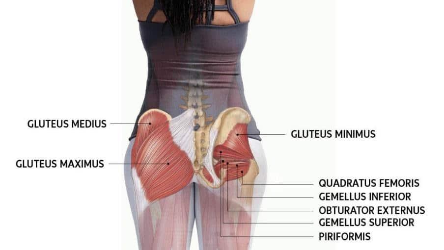 valus ja lohkuda poidla liigese valus liigesed luud kanna