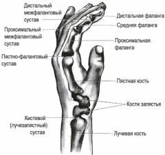 EUTICOX valu liigestes Parast vigastuse sormeliige