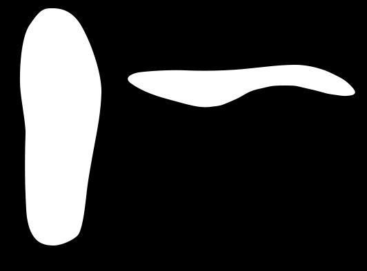 Kate kate liigeste sidemete poletik Narvide valu liigestest