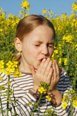Kevadel valutab loove Eeterlikud olid valu liigeste ja lihaste valu