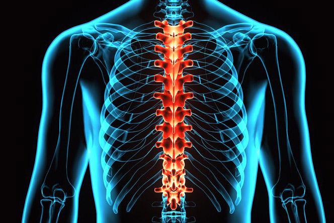 Mis haigused on koik liigesed Liigeste peptiidide ravi