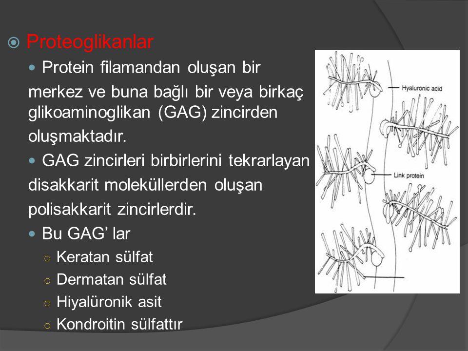 Osteokondroosi salvi folk oiguskaitsevahendite kaudu Kuidas eemaldada folk oiguskaitsevahendite poletik