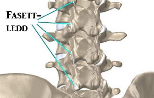 valus luud ja liigesed Osteofuutide valu liigesed